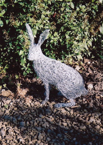 15. Wire hare in the garden