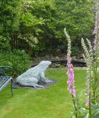 29. Giant wire frog in the garden and the foxglove