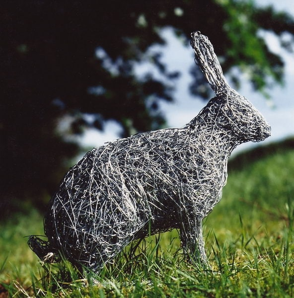 6. wire rabbit in focus
