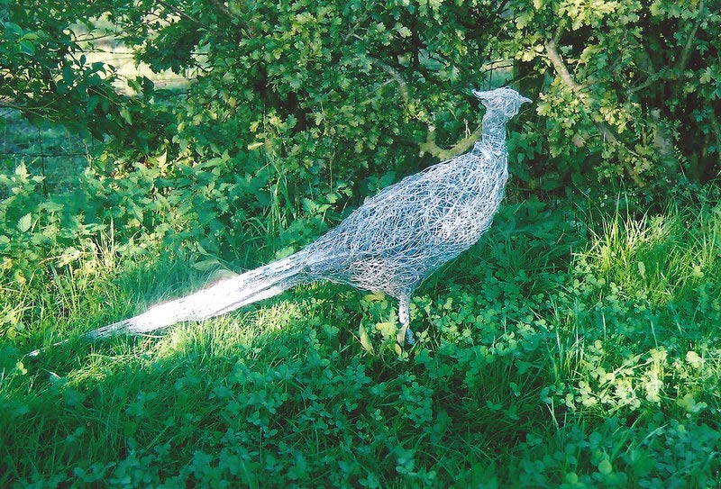 7. Wire pheasant reflecting the light, commission