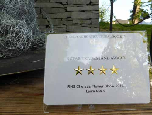2014 Chelsea Award