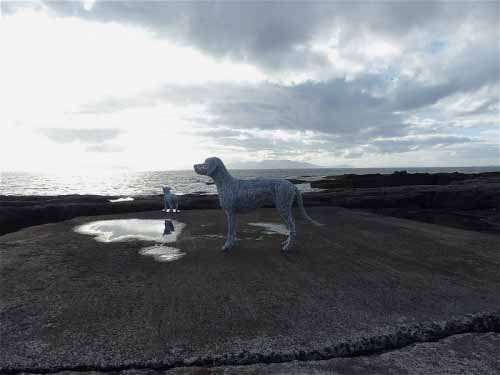 5. Wire dogs reflected in the skies