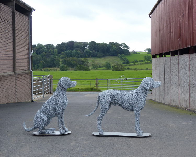 10. Wire dogs at the farm last picture together