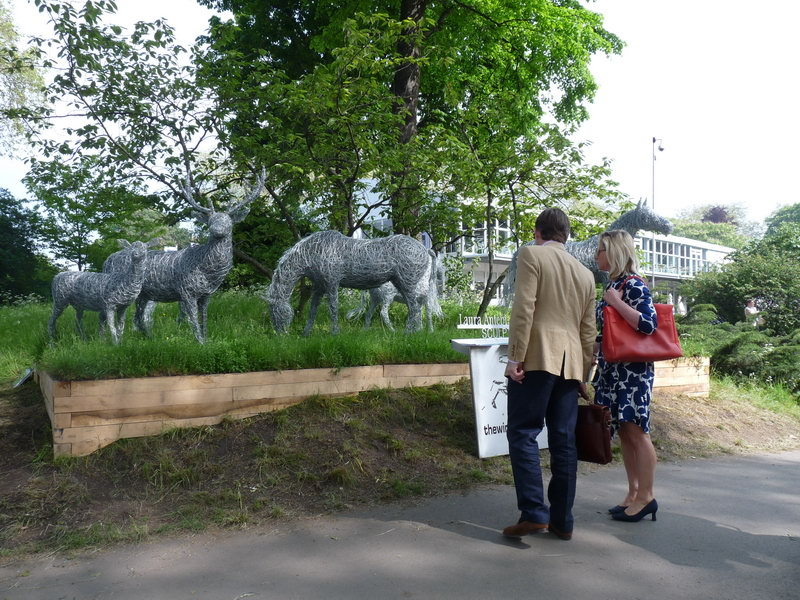 Grazing horse at Chelsea