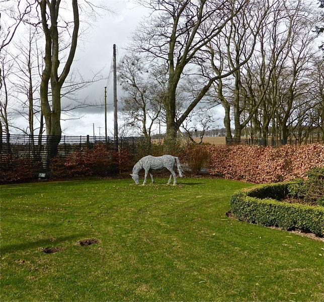 20. Grazing wire horse in autumn gardens Argyll, 2014