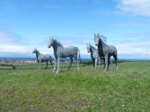 8. Four life-size wire horses on the hill against blue skies, Ayrshire