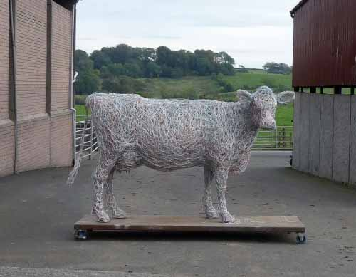 1. Close up of Jersey cow wire sculpture, 2015