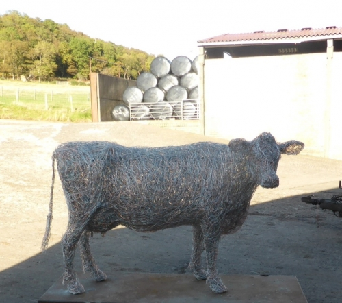 8. Wire cow sculpture in the shade