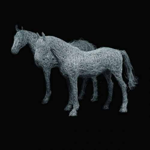 9. Pair of life-size wire horses on black-studio shot