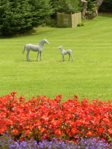 69. Horses in the gardens, horse sculptures at Killala House , Ireland