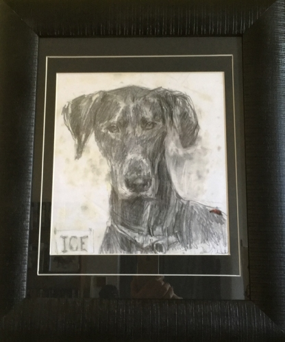 21. 'ICE' Dog portrait, pencil drawing.